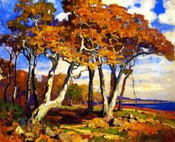 Sycamores Autumn - Franz Bischoff