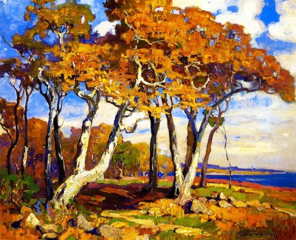 Sycamores Autumn – Franz Bischoff