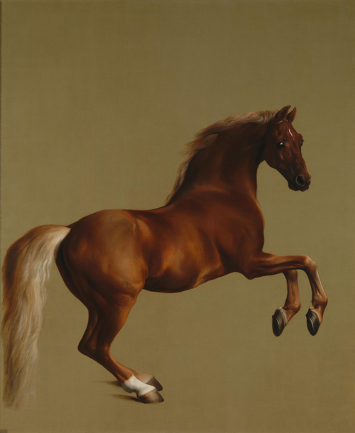 Whistlejacket – George Stubbs