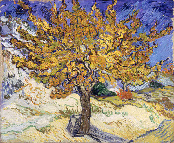 Mulberry Tree – Vincent Van Gogh