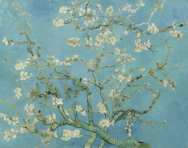 Branches with Almond Blossom – Vincent Van Gogh